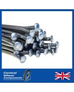 Polished Stainless Spokes